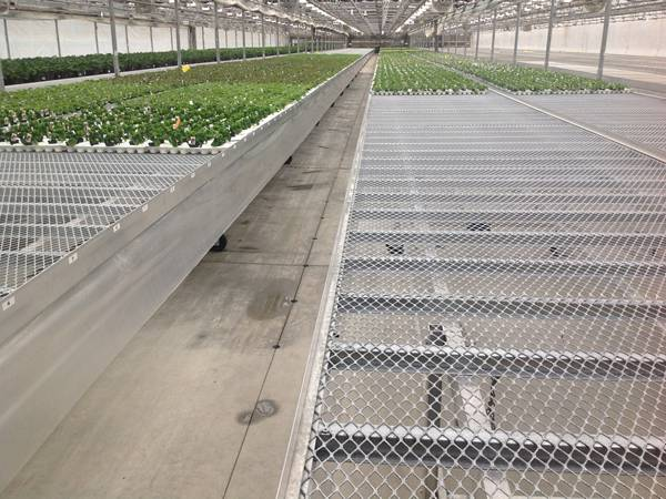 The large scale nursery is installed with expanded metal benches.