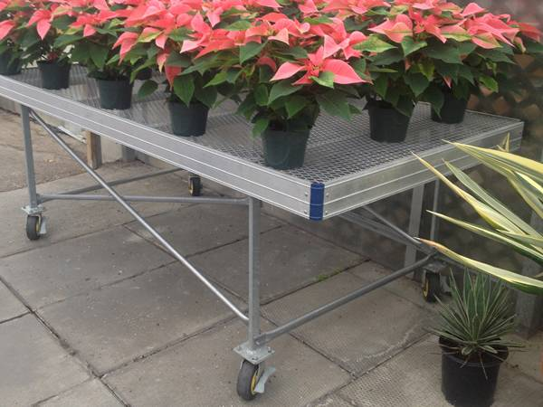 There are many potted anthurium flowers on the expanded metal stationary bench with wheel feet.