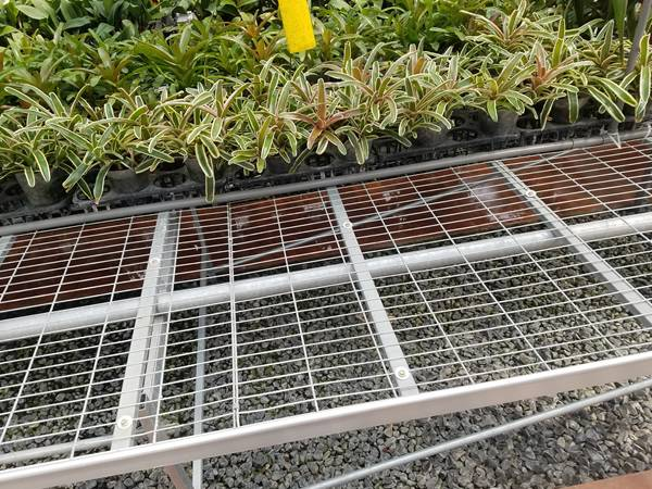 There are many bracketplants on the welded wire mesh stationary benches.
